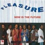 Now Is The Future: The Best Of Pleasure