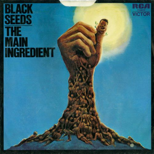 The Main Ingredient 'Black Seeds' courtesy of Tony Rounce