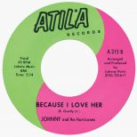 Johnny & the Hurricanes 'Because I Love Her'