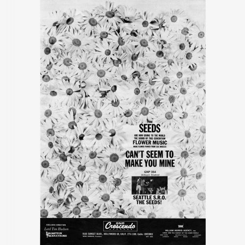 The Seeds advert