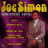 Greatest Hits: The Spring Years (MP3)