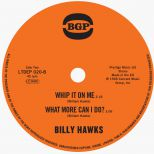 Billy Hawks 'Whip It On Me/